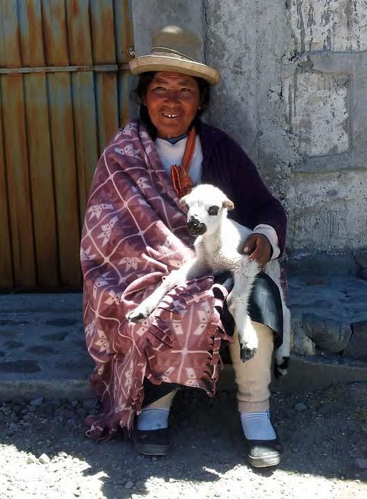 Progetto di sviluppo del modello di agriturismo nelle regioni andine